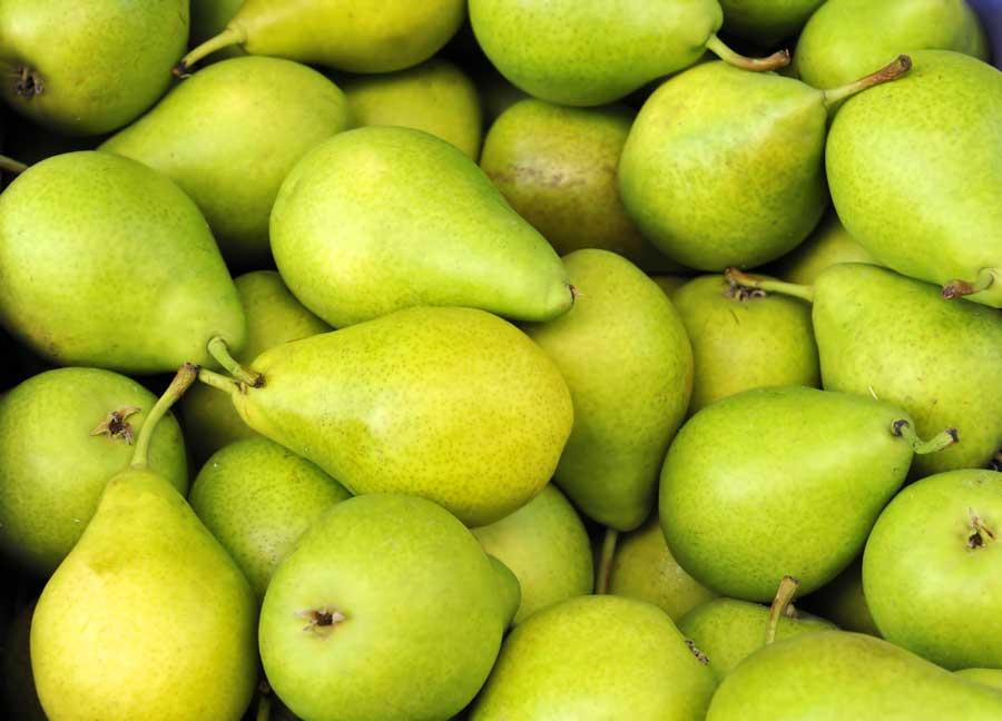 jesmond-fruit-barn-pear