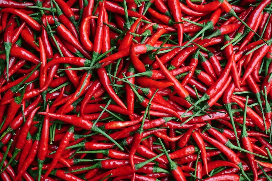 Image result for chilli