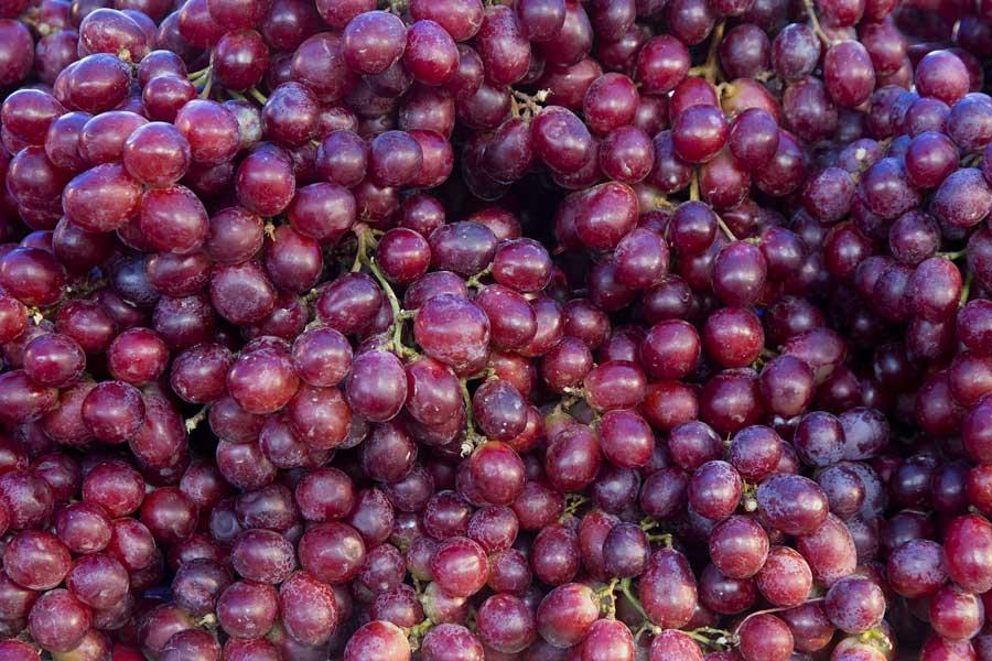 jesmond-fruit-barn-red-grapes